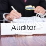 tax auditor2