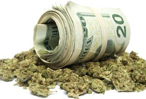 medical marijuana tax collections - pot and a roll of money