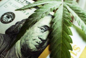 Form 8300 and the Marijuana Industry